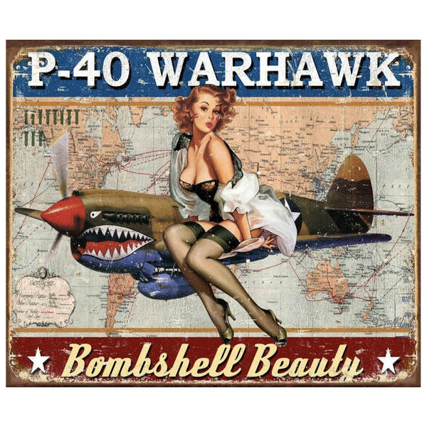Bilde av P-40 Warhawk